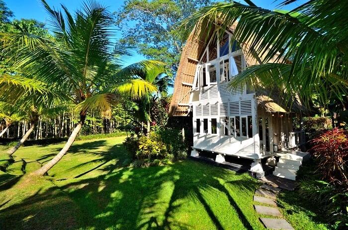 Jendela Di Bali, Ubud