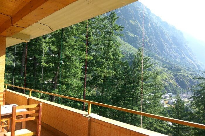 the spectacular view of pine trees from our hotel in kasol