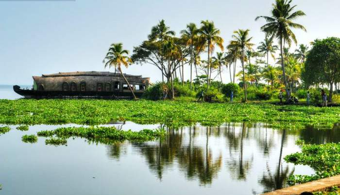 Allepey-in-Kerala-TravelTriangle