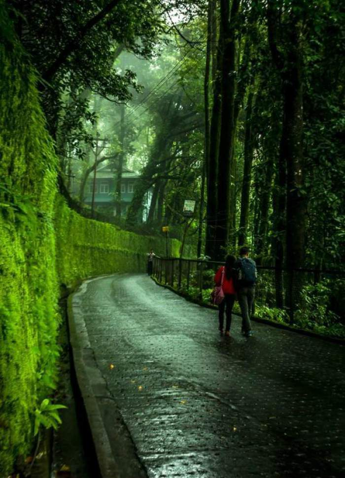 Couple-walking-down-the-road-in-Kerala-TravelTriangle