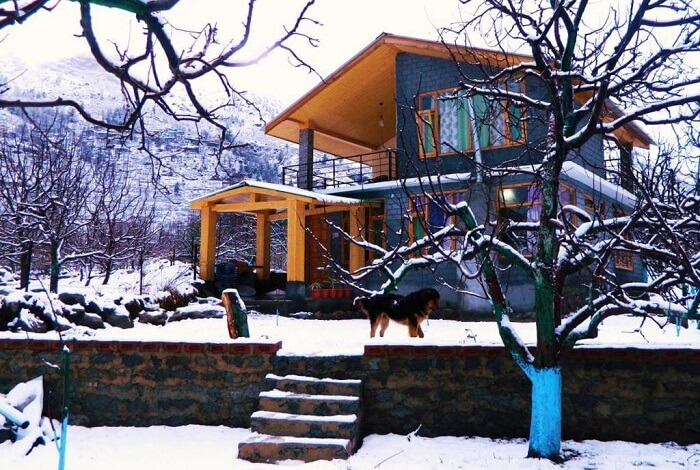 Idyllic Inn Manali in winters
