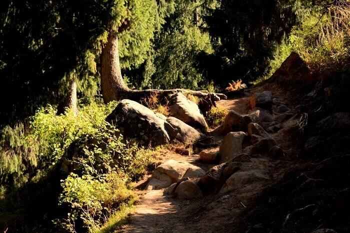 The rocky path on the Kheer Ganga trek