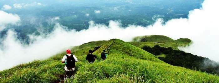 People trekking at Wayanad – one of the best places to visit in Kerala