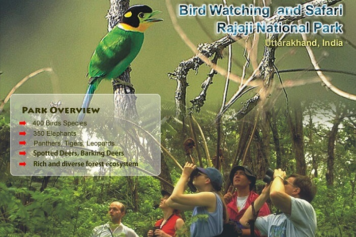 An ad of bird-watching at Rajaji National Park