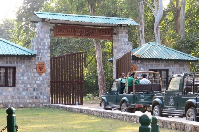 Tourists going for a jeep safari at Rajaji National Park