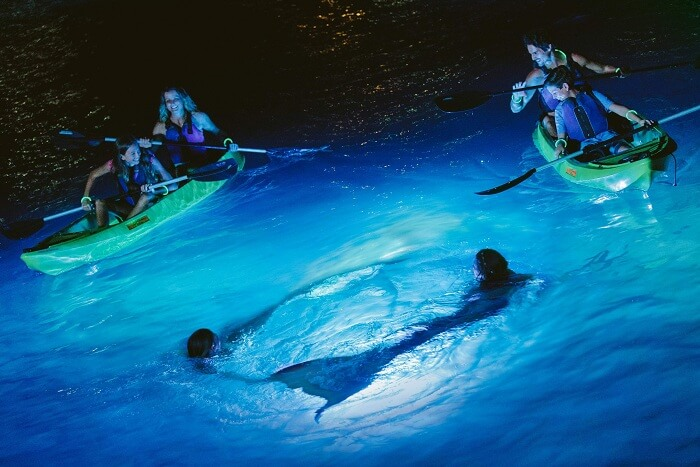 A family on a night kayaking tour meets locals dressed as mermaids in the US Virgin Islands
