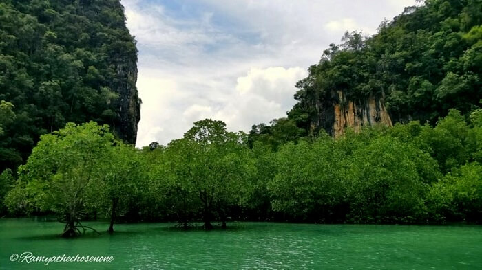 Hong island tour Krabi