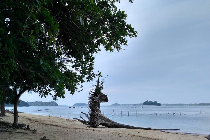 The beautiful Wandoor Beach in Port blair