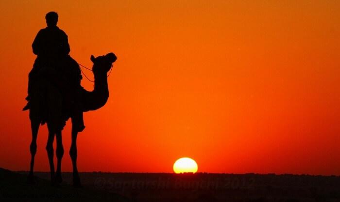 camel safari near wild desert resort