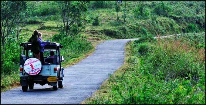 Periyar Jungle Jeep Ride covers the views of the lovely Iddukki town, Mullaperiyar Dam of Kerala