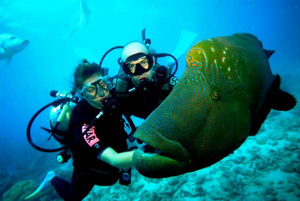 scuba-diving-with-your-instructor1