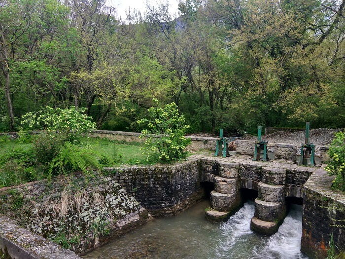 Dachigam_National_Park-_Jammu_&_Kashmir