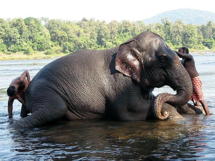Top Tourist Places in Kerala-The Ultimate Guide