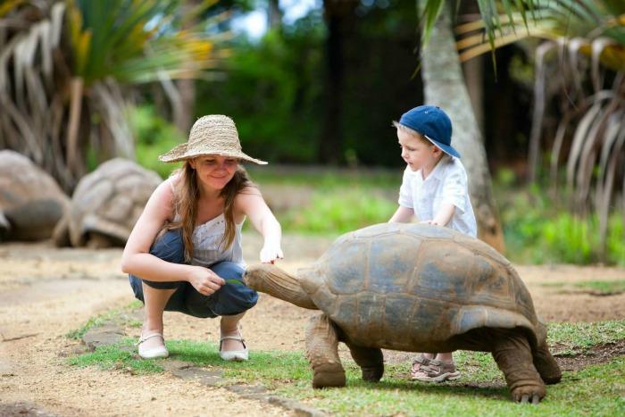 Crocodile & Giant Tortoises Park in Mauritius