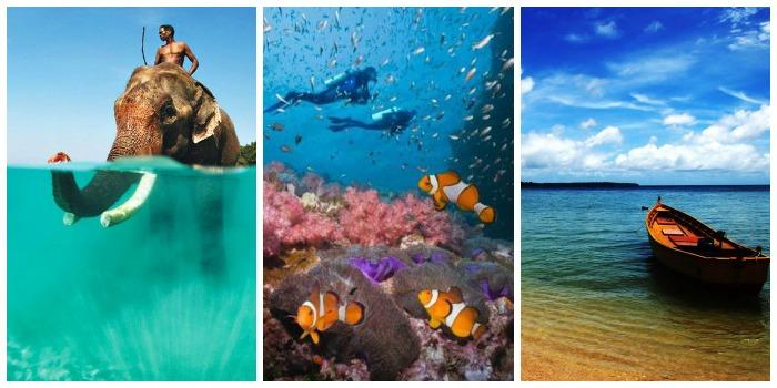 Enjoy scuba diving, white sandy beaches, elephant of Andaman and Nicobar
