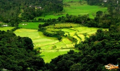 coorg-reviews-tourist-places-tourist-destinations