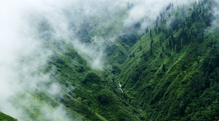 A combination of hills and valleys at Coorg