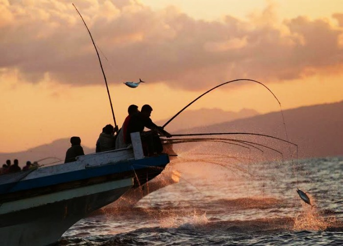 Night Fishing in Maldives Island