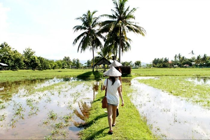 Laman Padi, An ecotourism complex for a closer look at rice paddies