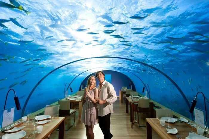 Enjoy a spectacular dinner at the Ithaa underwater aquarium restaurant
