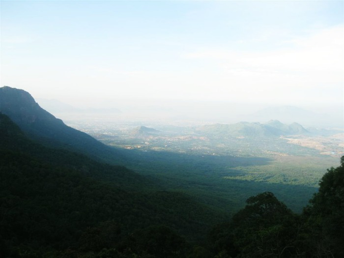 Yercaud lake forest known for cofee plantations and Orange Groves