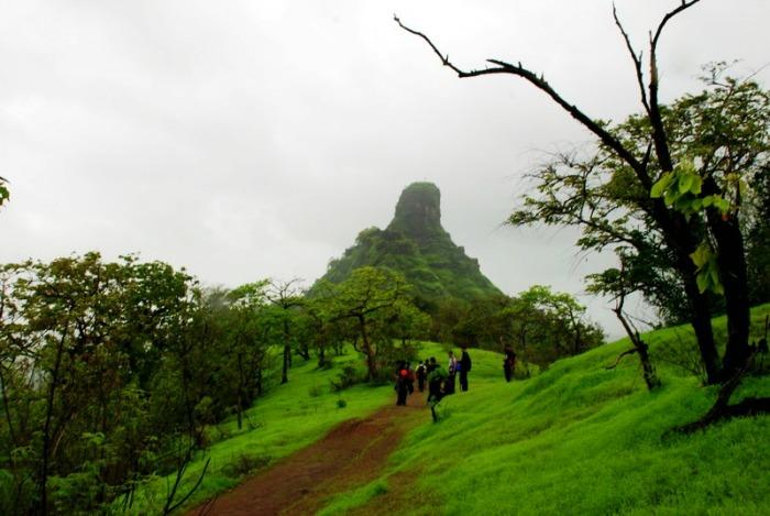 Trekking in Karnala Bird Sanctuary