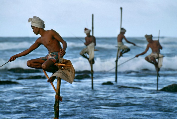 Traditional stilt fishing on the stilts 2 meters above the sea