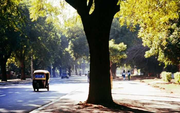 Delhi is one of the greenest capitals in Asia