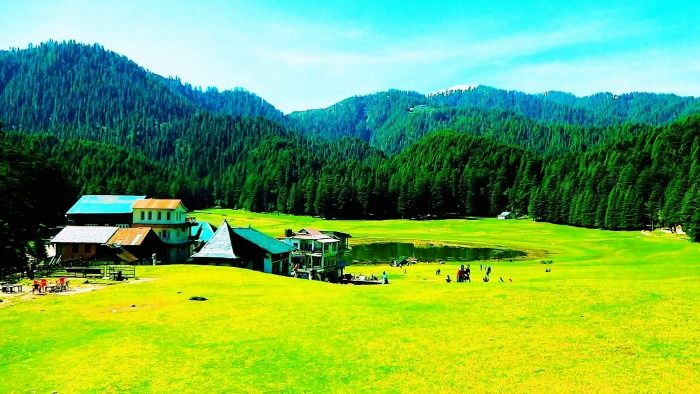 Magnificent Deodar forests in Khajjiar in Himachal Pradesh