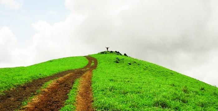 The verdant slopes of Kodachadri hill station in Karnataka