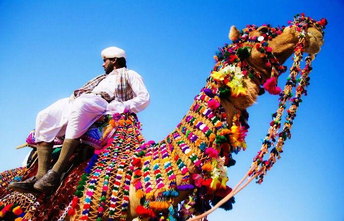 Cameleers trading Camels in Pushkar mela