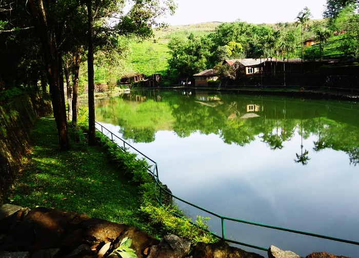 Vagamon Hide Out & Ayurveda Spa in Vagamon
