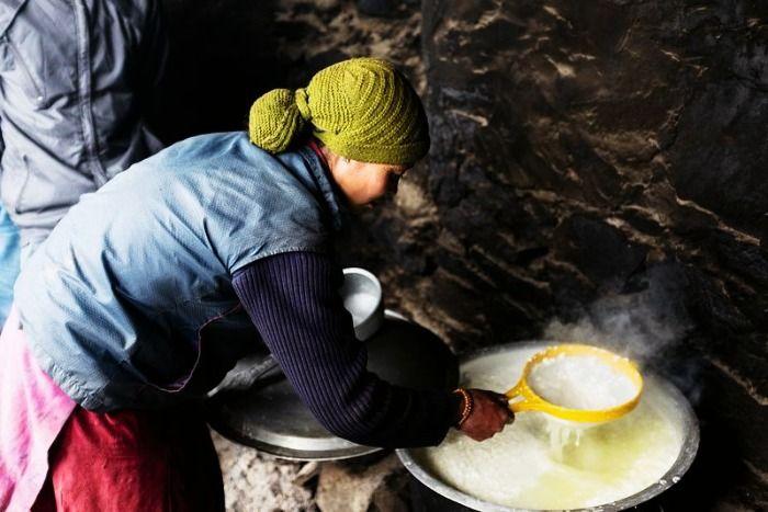 Yak Cheese Preparation in Zanskar in Ladakh
