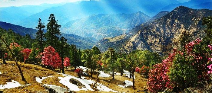 Almora in Uttarakhand