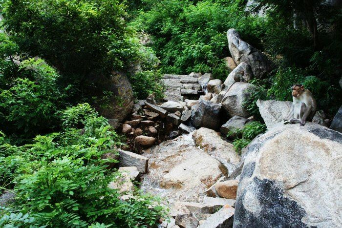 From our list of places to see in a day around Bangalore, Anthargange is the unexplored trekker's paradise