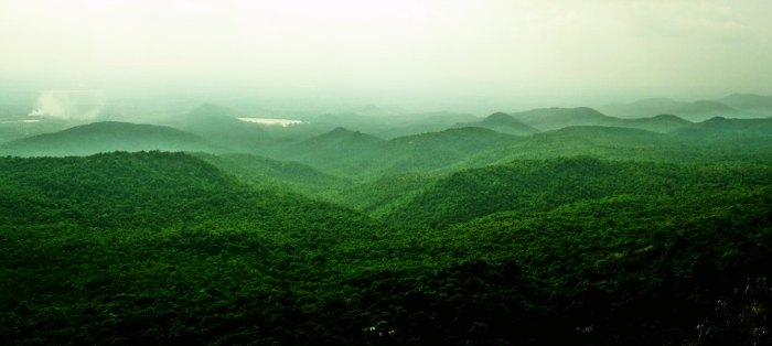 BR hills is an amazing weekend picnic spot near Bangalore ideal for trekkers