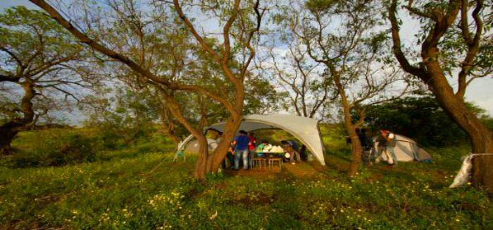 Barbeque camping in Lonavala
