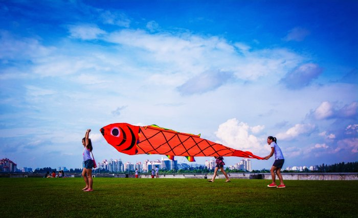 Kids flying a squid and fish kite at Marina Barrage