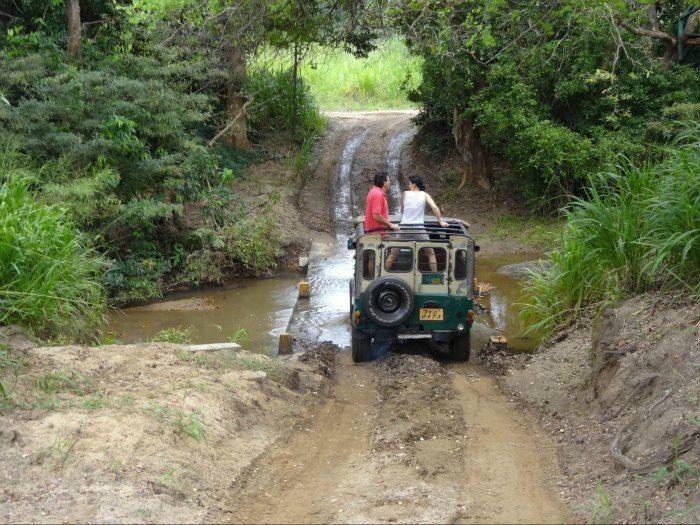 Jeep Safari in Jim Corbett National Park