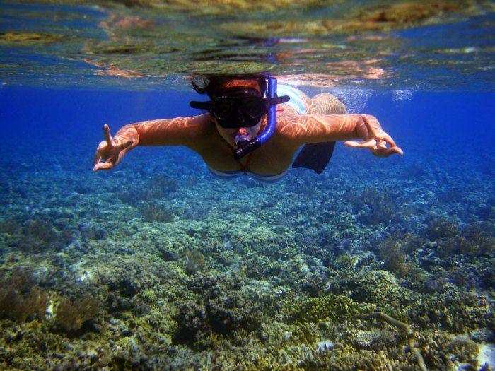 Dive in the clear waters of Menjangan