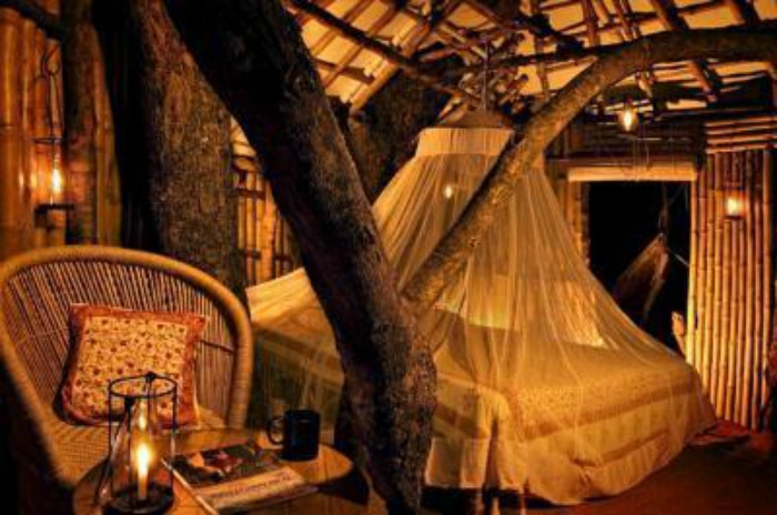 A treehouse in Wild Canopy Nature Reserve in Mudumalai