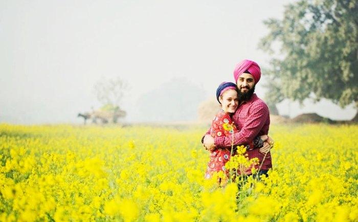 Punjab Pro pic