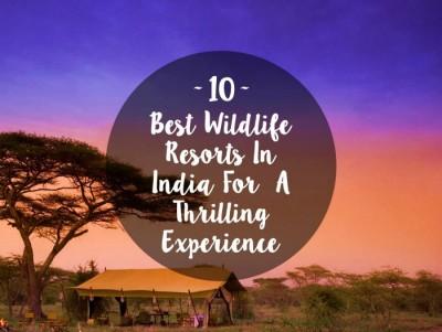 wildlife-resorts-india-cover