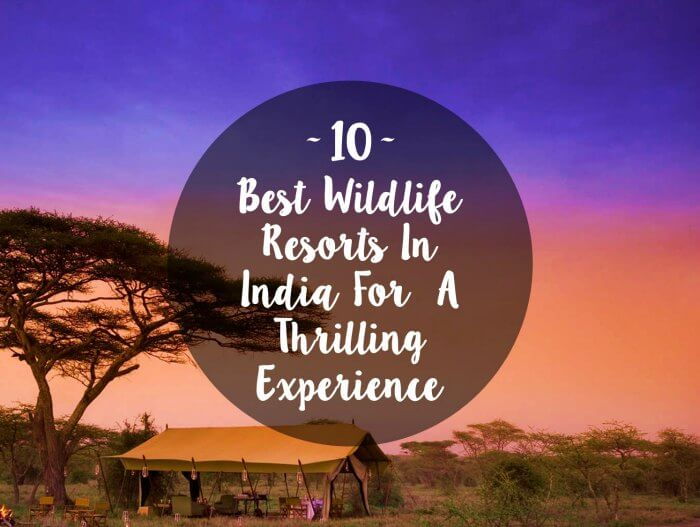 wildlife-resorts-india-cover