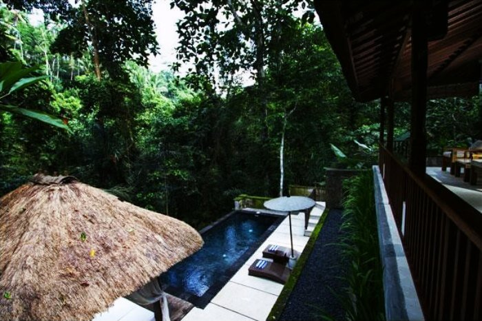 The infinity pool of Alam Ubud Culture Villas & Residences