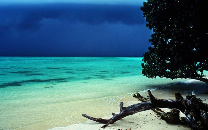 Andaman Islands are one of the best places to visit in monsoon in India