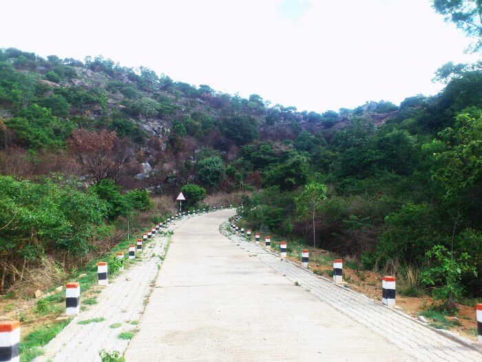 Avalabetta hill station near Bangalore