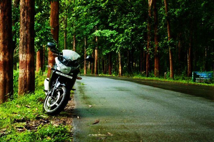 Plan a road trip from Bangalore to Agumbe