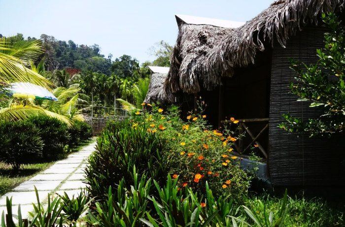 The charming cottages of Blue Bird Resort
