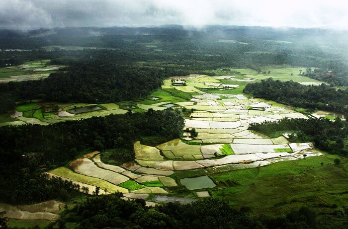 Coorg is one of the best places to visit in India during monsoons